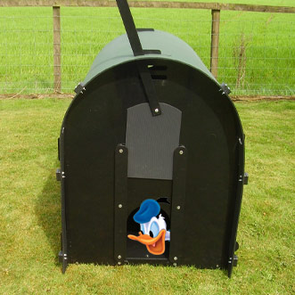 recycled-plastic-duck-house-detail-with-donald